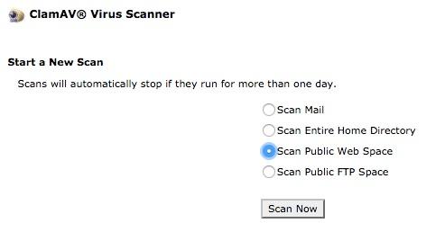 scan virus