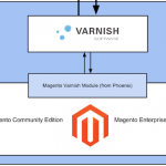 Speed up Magento with Varnish Cache